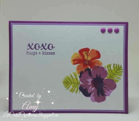 Feb 10 Purple card