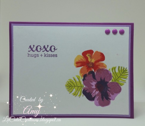 Feb 10 Purple card