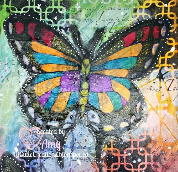 Feb 14 Butterfly