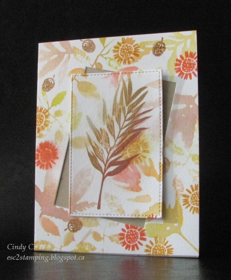 a2z_ombre_stamp_your_own_plant