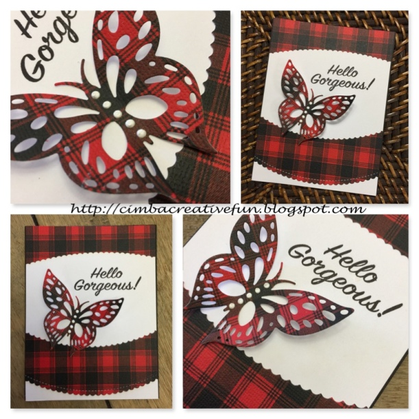 Hello Gorgeous plaid collage wm.jpg