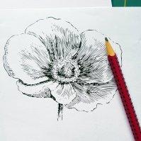 digi flower no line 1