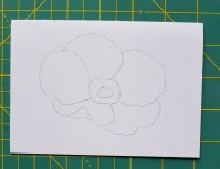 digi flower no line 3