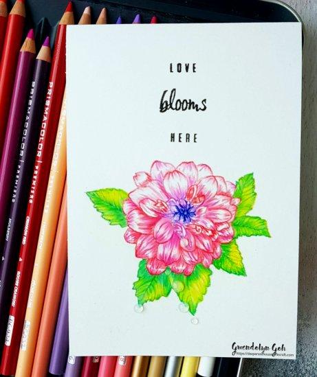 Hero Arts Dahlia color pencil cu